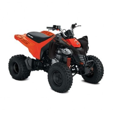 Can-Am DS 250 '20