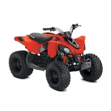 Can-Am DS 90 '20